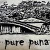 Puna_4_pure_puna