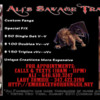 Ali's Savage Traits Flyer 2012